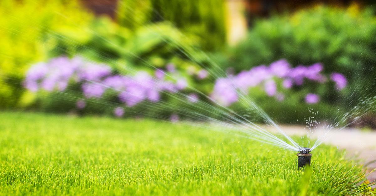 Migliore centralina irrigazione WiFi