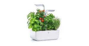 Miglior giardino smart