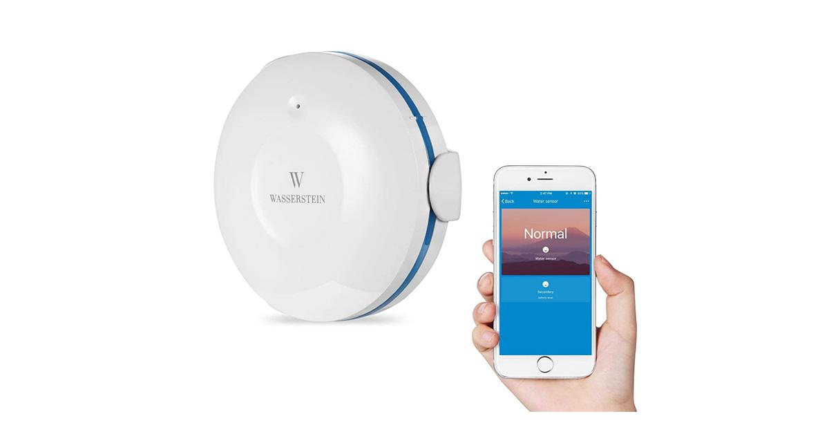 Miglior sensore acquatico Smart Wi-Fi